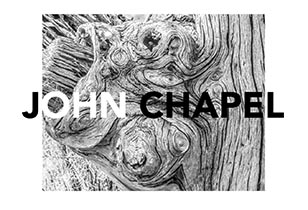 John Chapel on photograph of tree roots