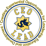 CEO LEAD Program